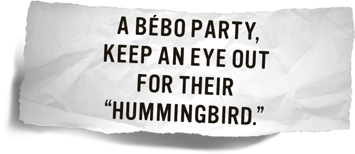 A Bébo Party, Keep An Eye Out For Their Hummingbird